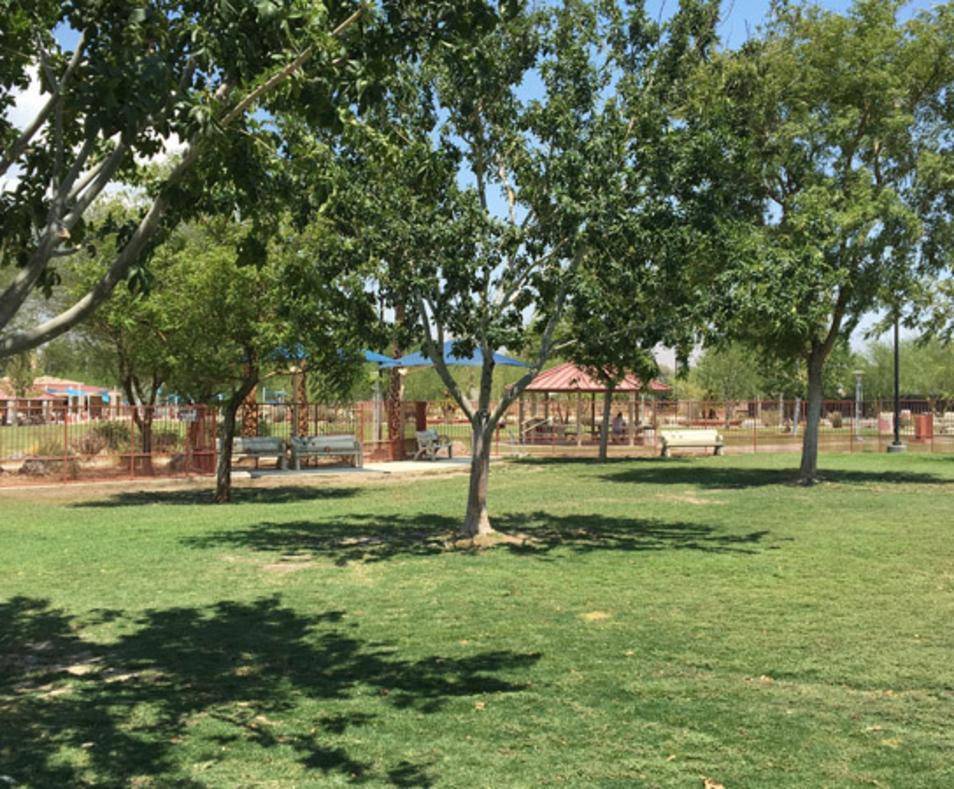 Freedom Park - Dog Park