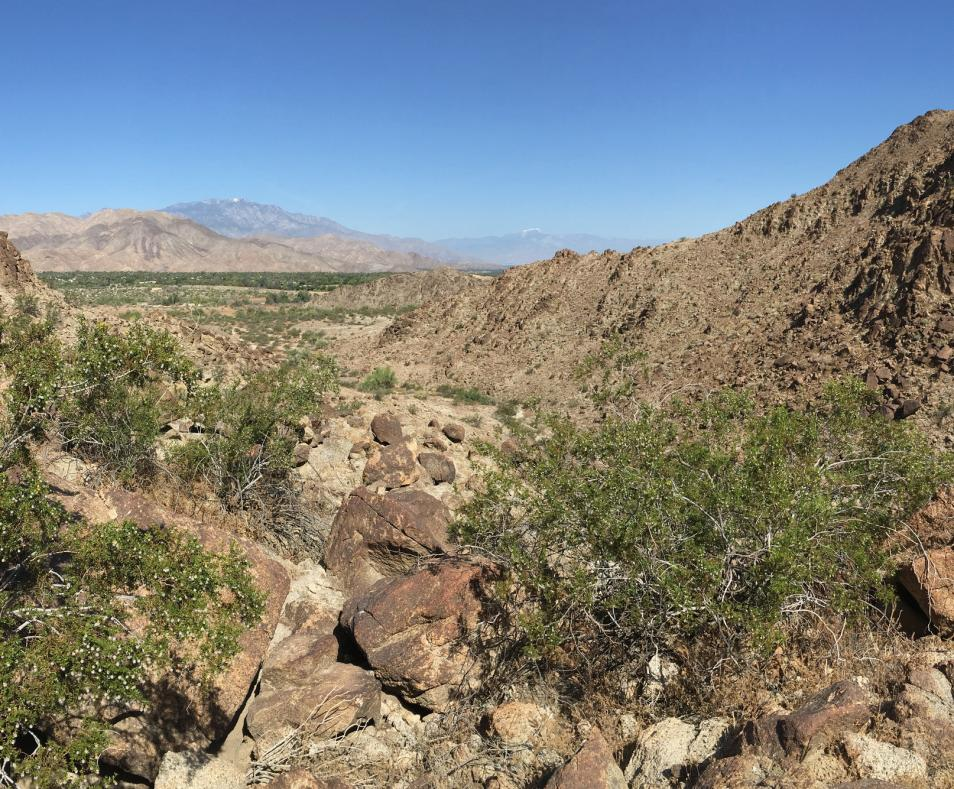 GPS_Living Desert