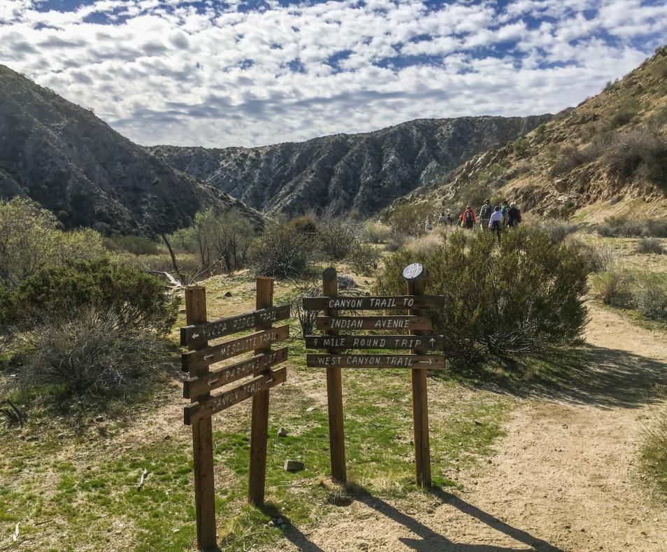Big Morongo Canyon Through Hike