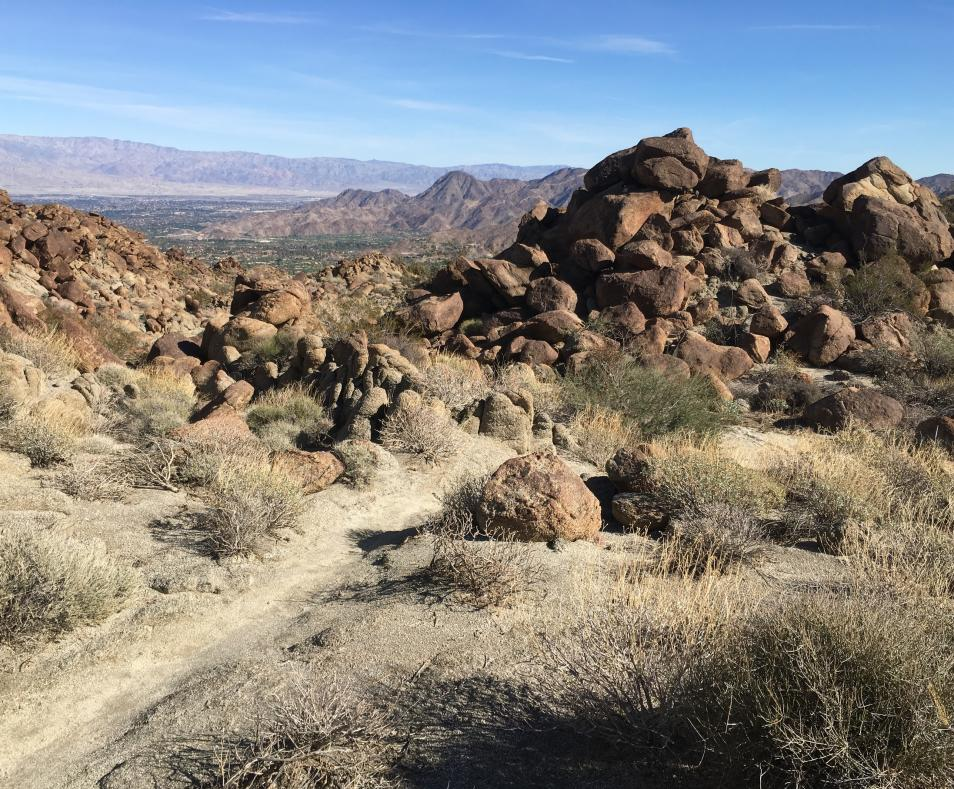 Cathedral Canyon Trail