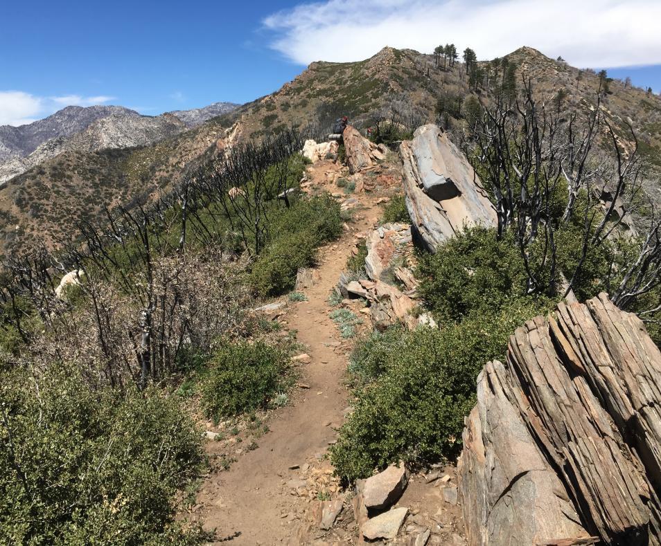Spitler Peak