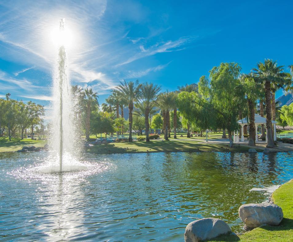 scenic lake in park