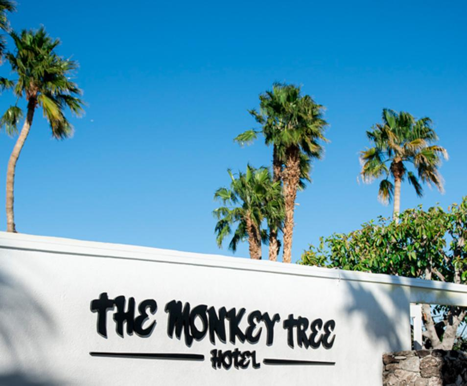 The Monkey Tree Hotel