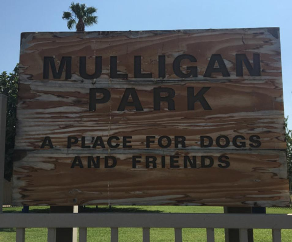 Mulligan Dog Park