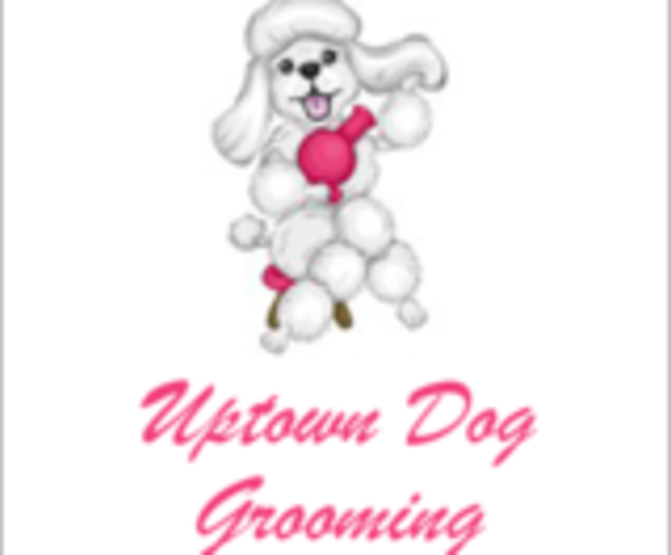 Uptown Dog Grooming