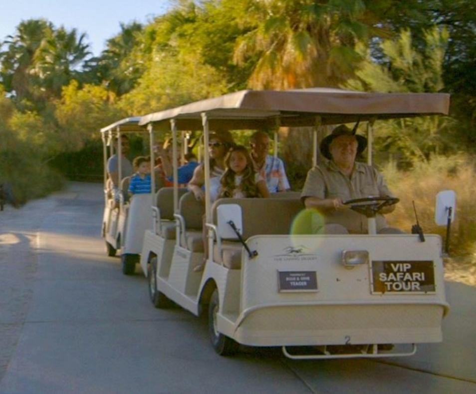 Private Safari Tour