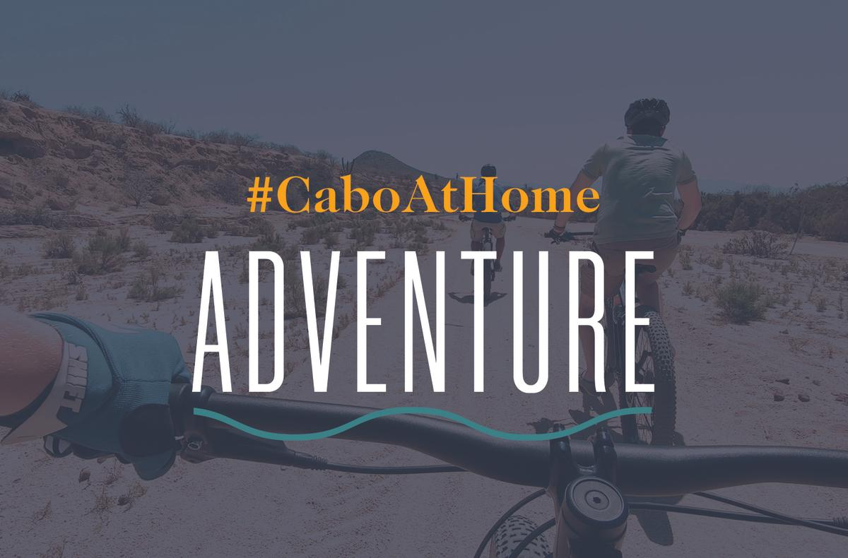 Cabo At Home: Adventure