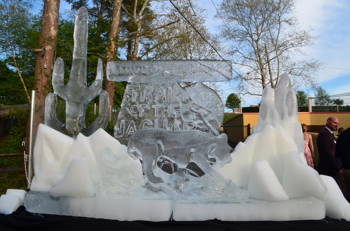 Elmwood Park Zoo Trail of the Jaguar Ice Sculpture