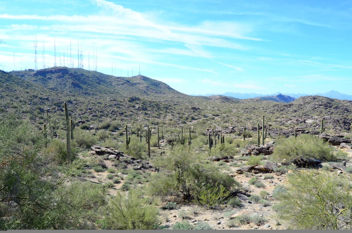 South Mountain Hiking Trails