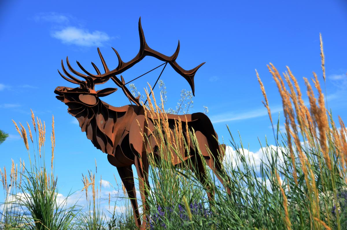 Indigenous Sculpture Elk
