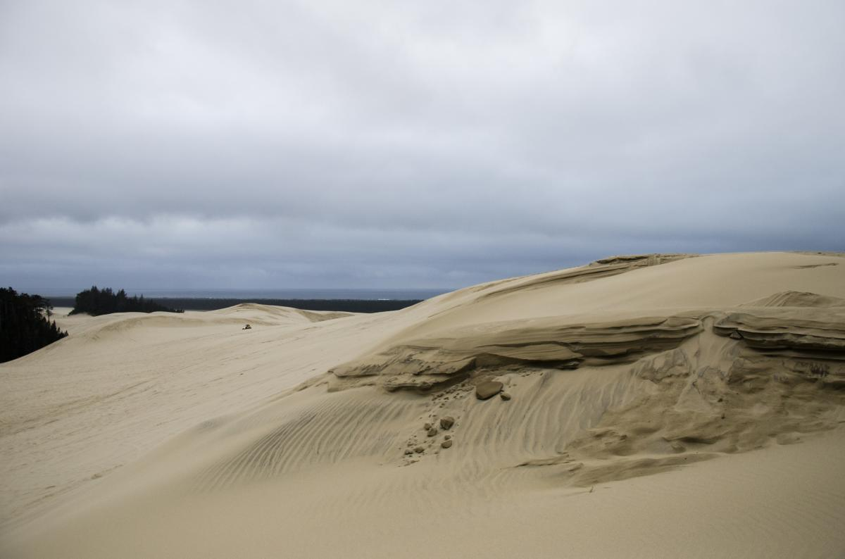 Oregon Dunes National Recreation Area by Katie McGuigan