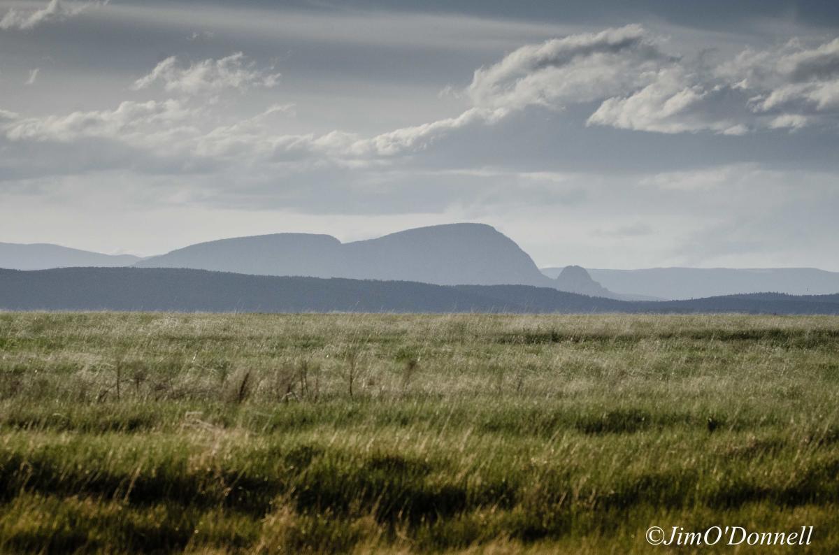 Mills Canyon/Kiowa National Grasslands