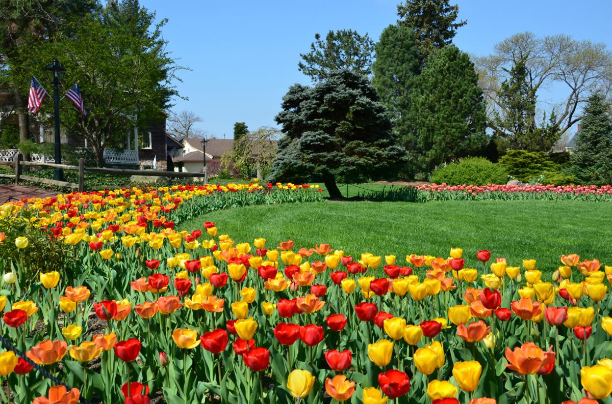Take a stroll through the gardens at Peddler's Village. This 18th century-inspired shopping village features landscaped gardens throughout the 42-acre property, including a traditional Dutch style tulip garden the brings the entire village to life when it blooms in spring.
