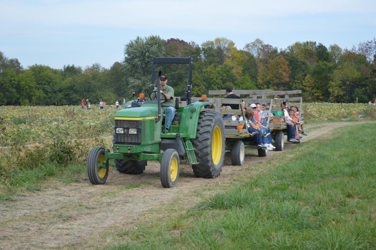 Beasley's hayride to pumpkin patch