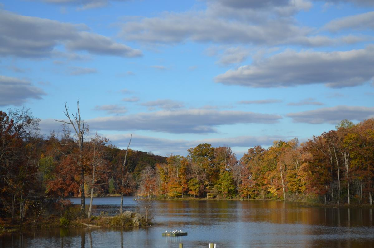View of the Occoquan River in Lake Ridge Park during the Fall season