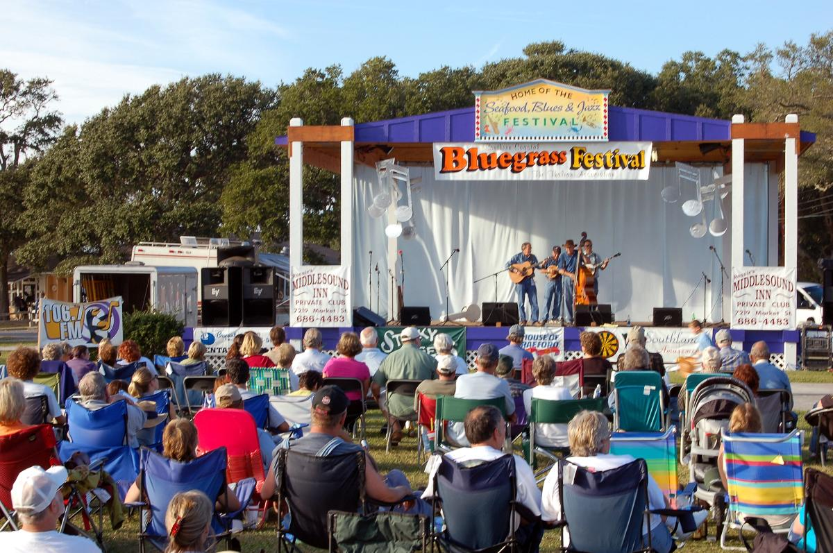 Bluegrass Festival- close up