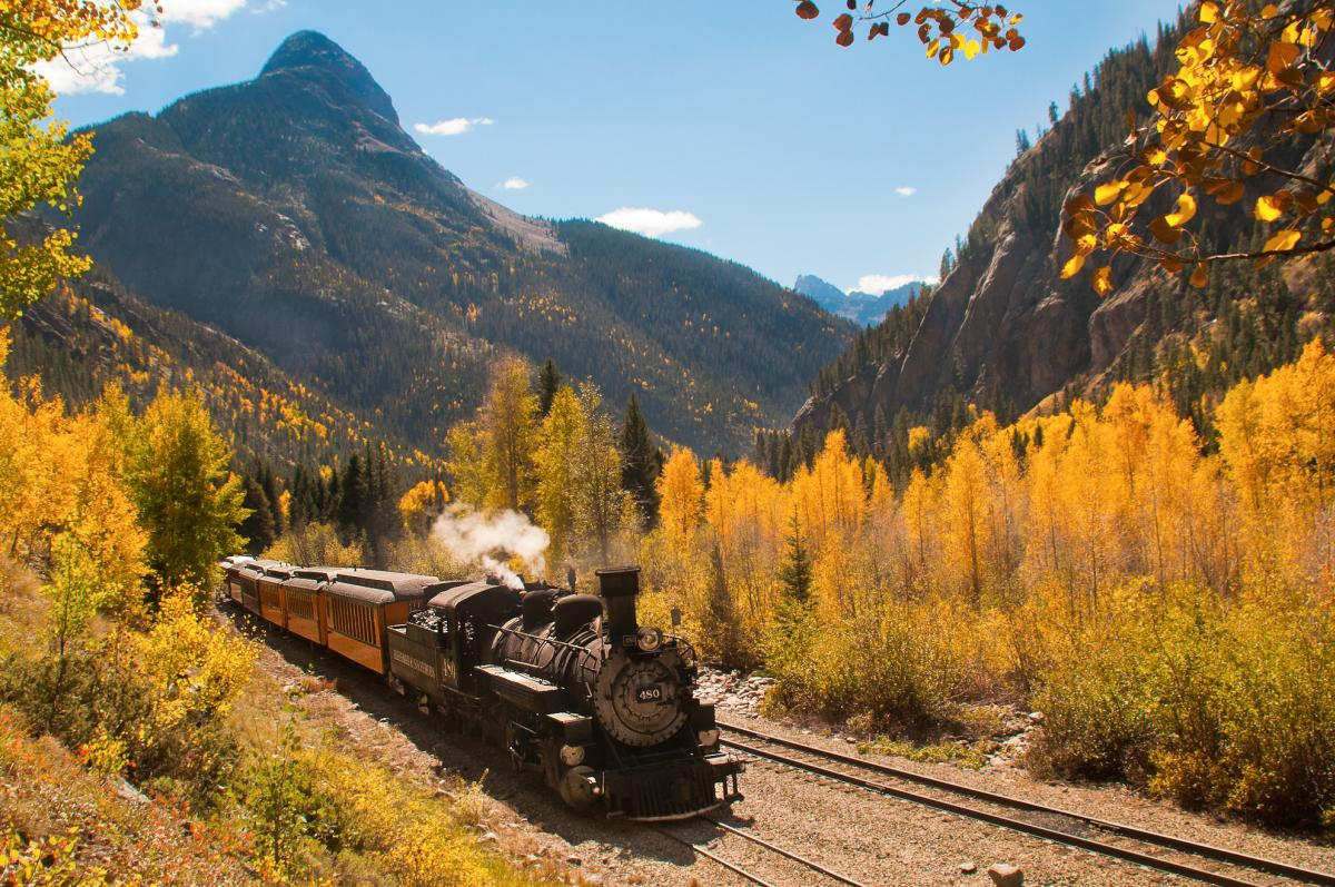 Train with Fall colors
