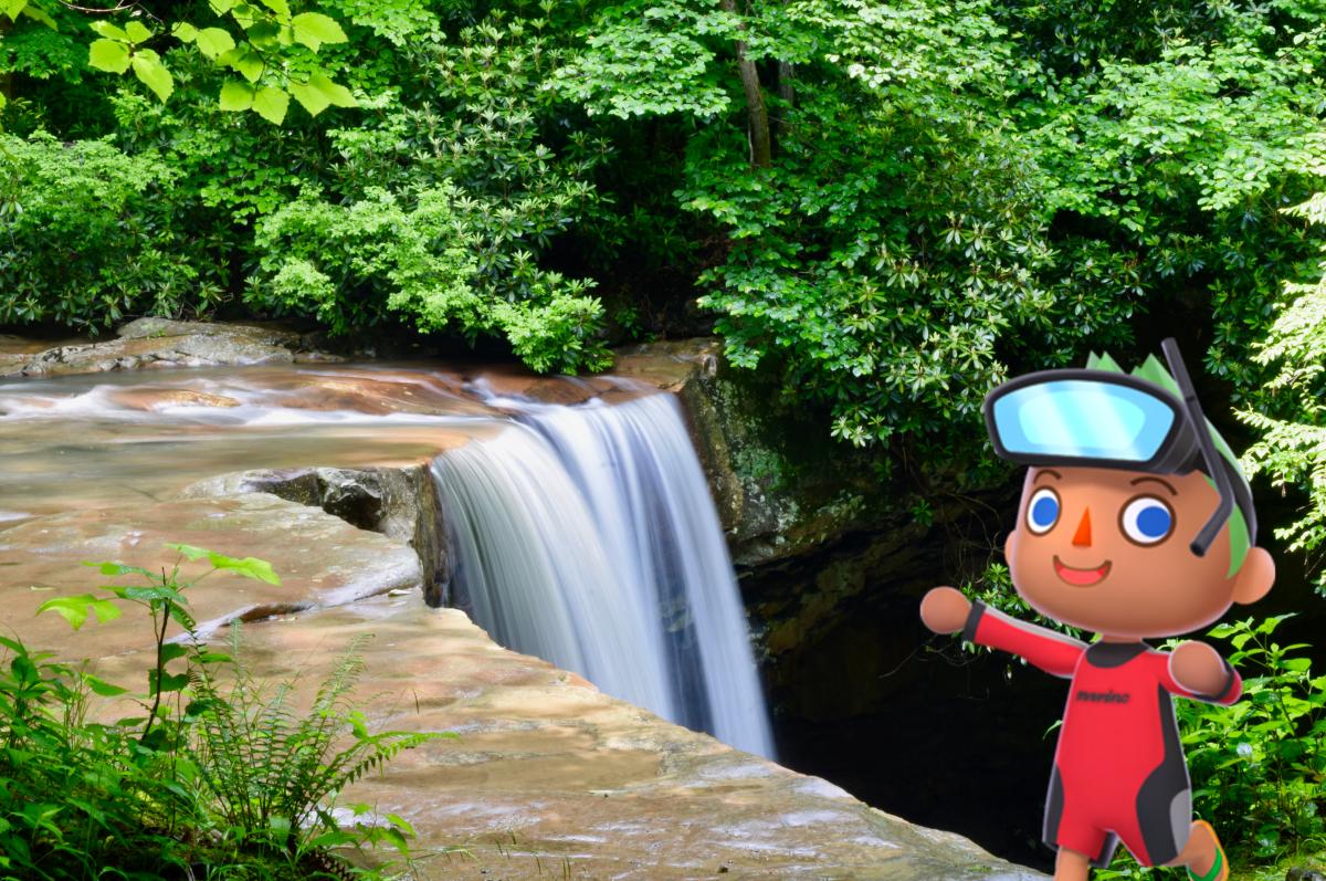 Animal Crossing Cucumber Falls