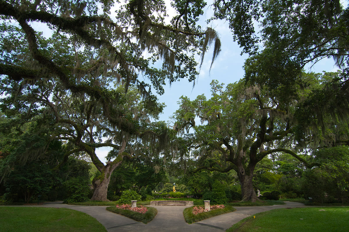 Scenic walk at Brookgreen Gardens, Myrtle Beach, SC