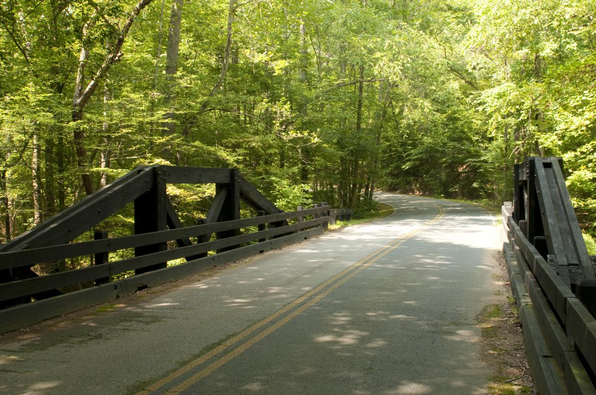 bridge along Scenic Drive in Prince William Forest Park