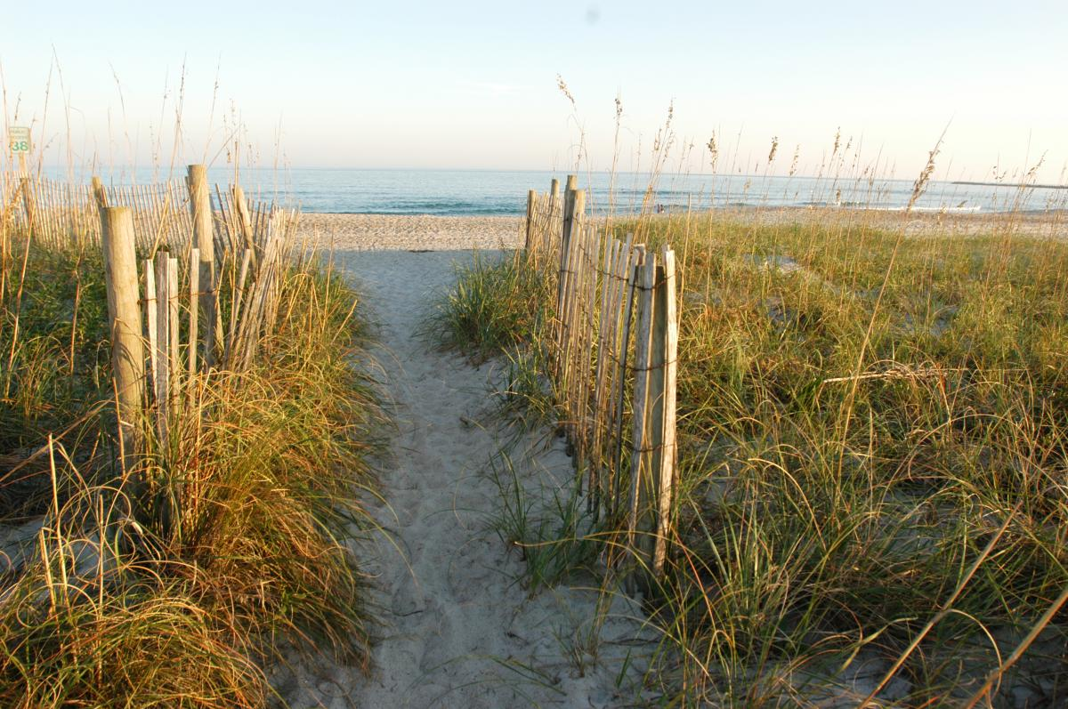Beach access path