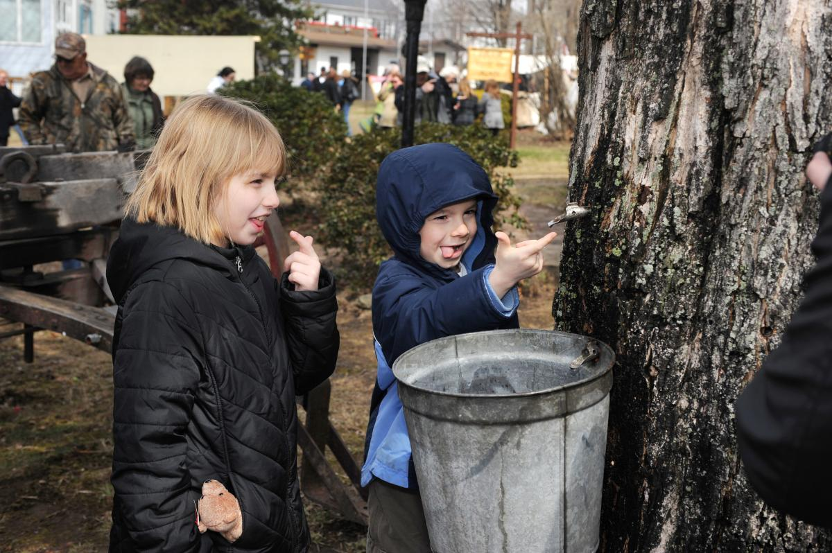How Sweet It Is! Maple Syrup Tour
