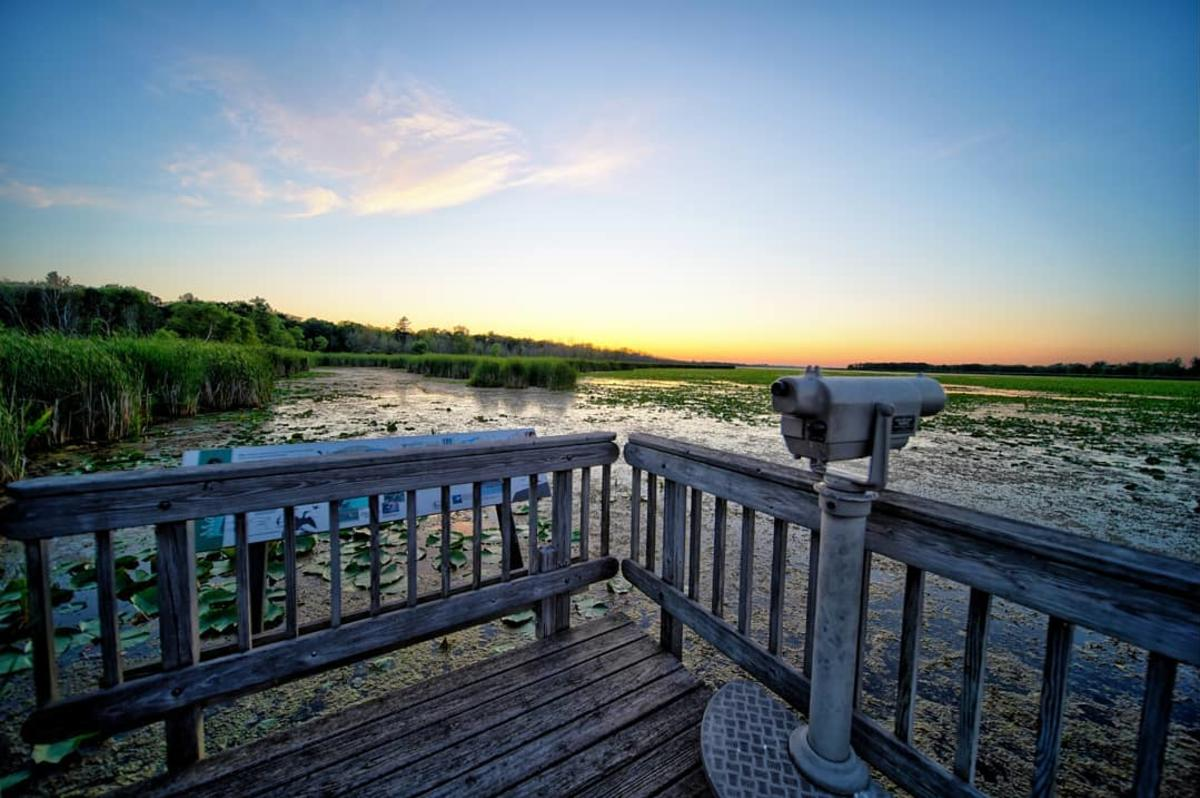 Observation deck overlooking the wetlands of Tobico Marsh at Bay City State Park