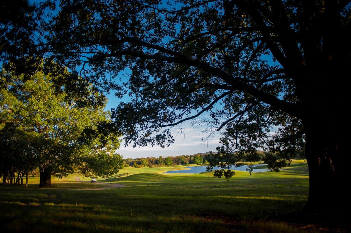 RTJ Hamton Cove Golf
