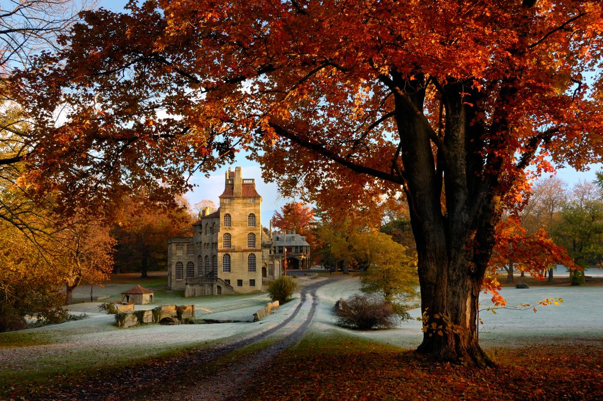 Fonthill Castle in Doylestown includes interior walls, floors and ceilings elaborately adorned with an array of original handcrafted tiles.