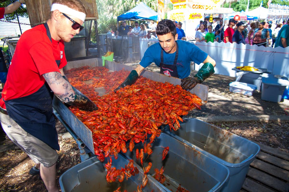 Preparing Crawfish for the Crawfish Festival