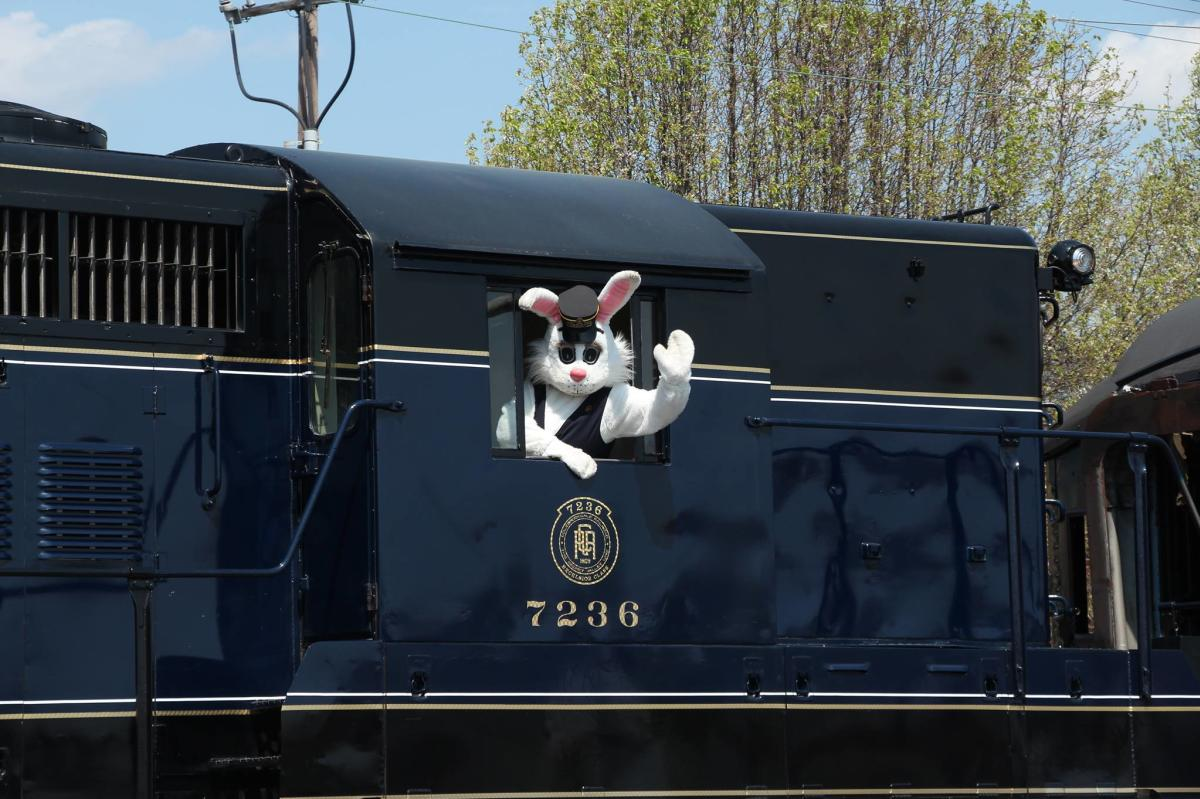 Colebrookdale Railroad Easter Bunny Conductor