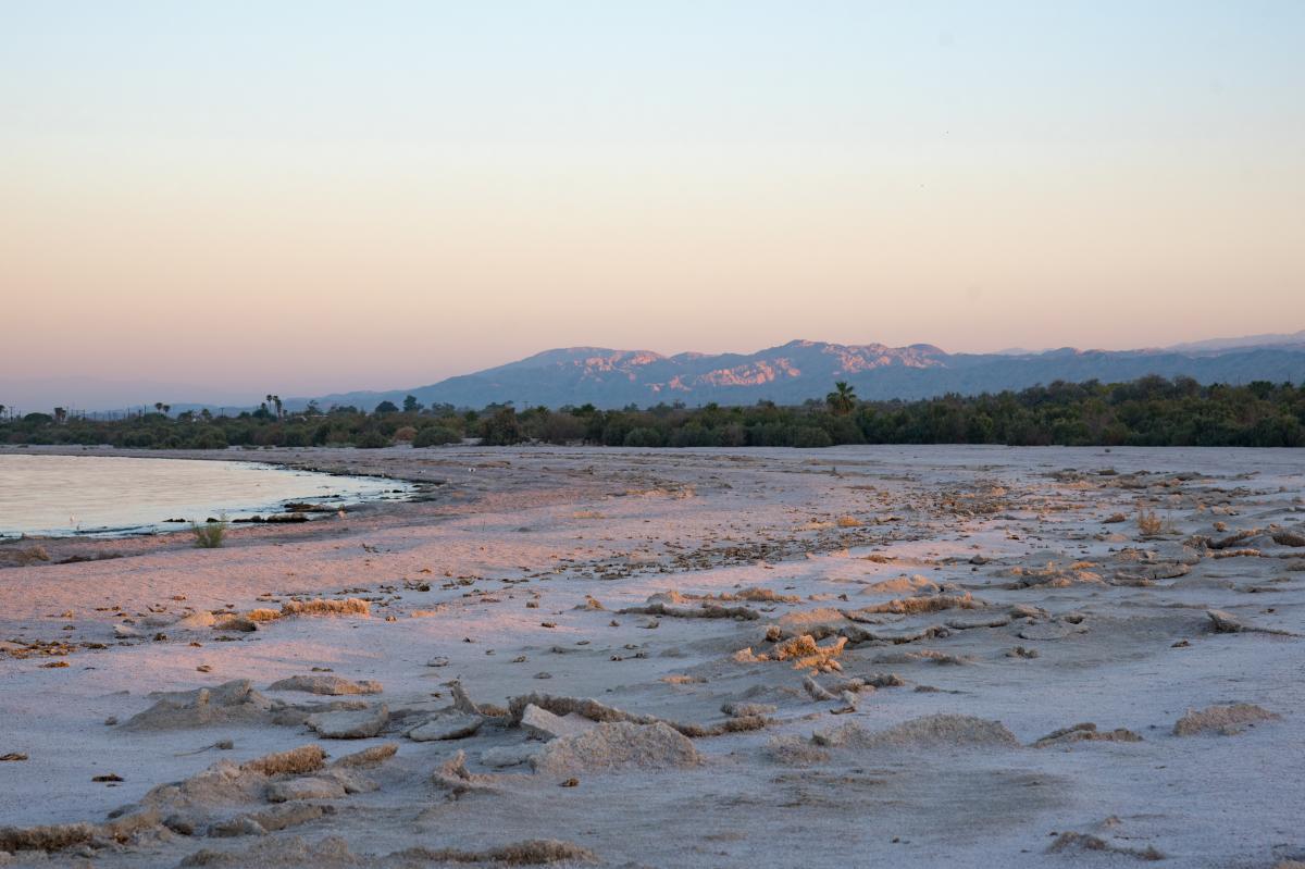 Salton Sea Sand