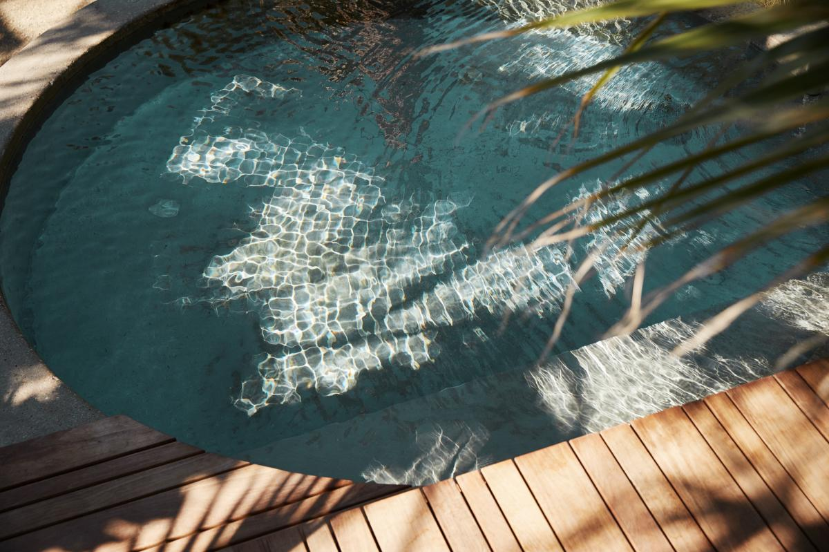 Palm fronds over a pool