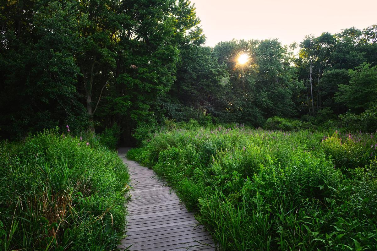 Silver Lake Nature Center Trail