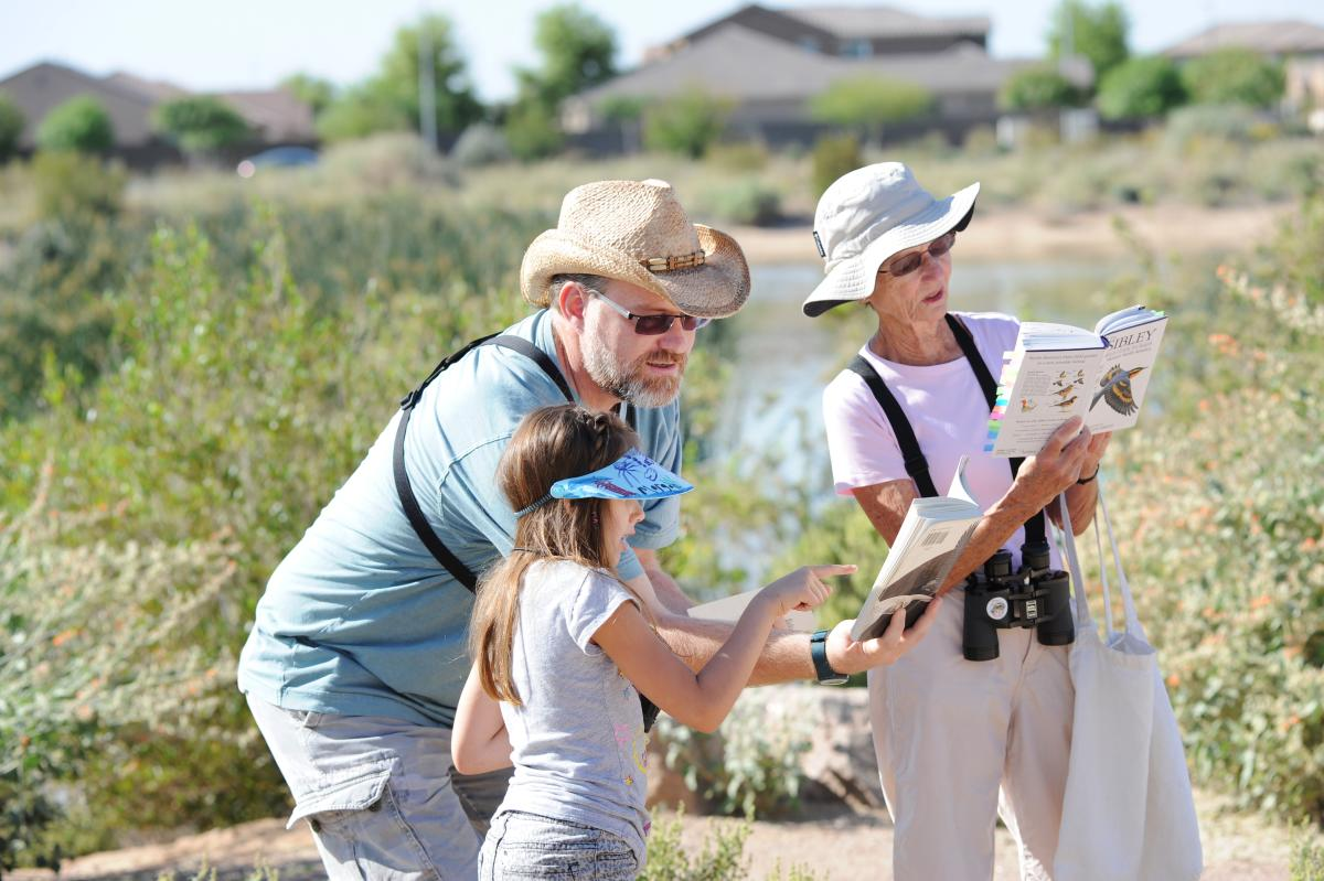 Guided Bird Walks at Veterans Oasis Park