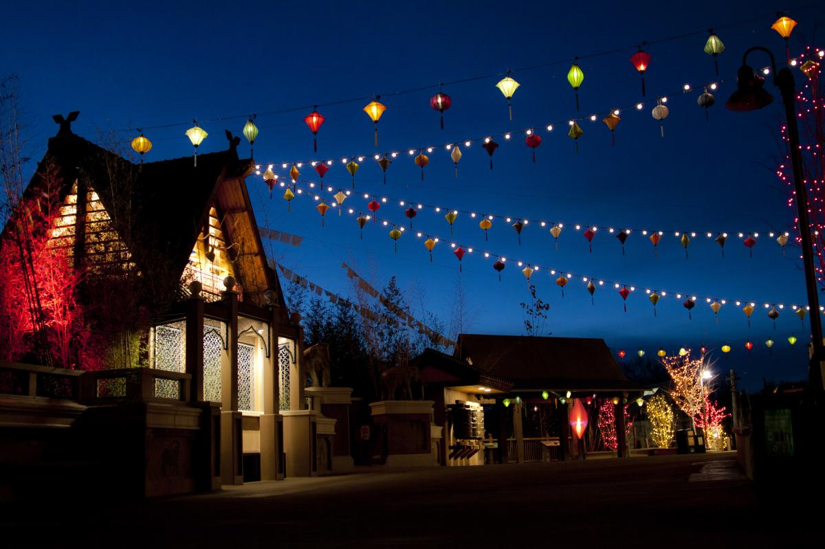 Denver, Colorado Zoo Lights Lanterns