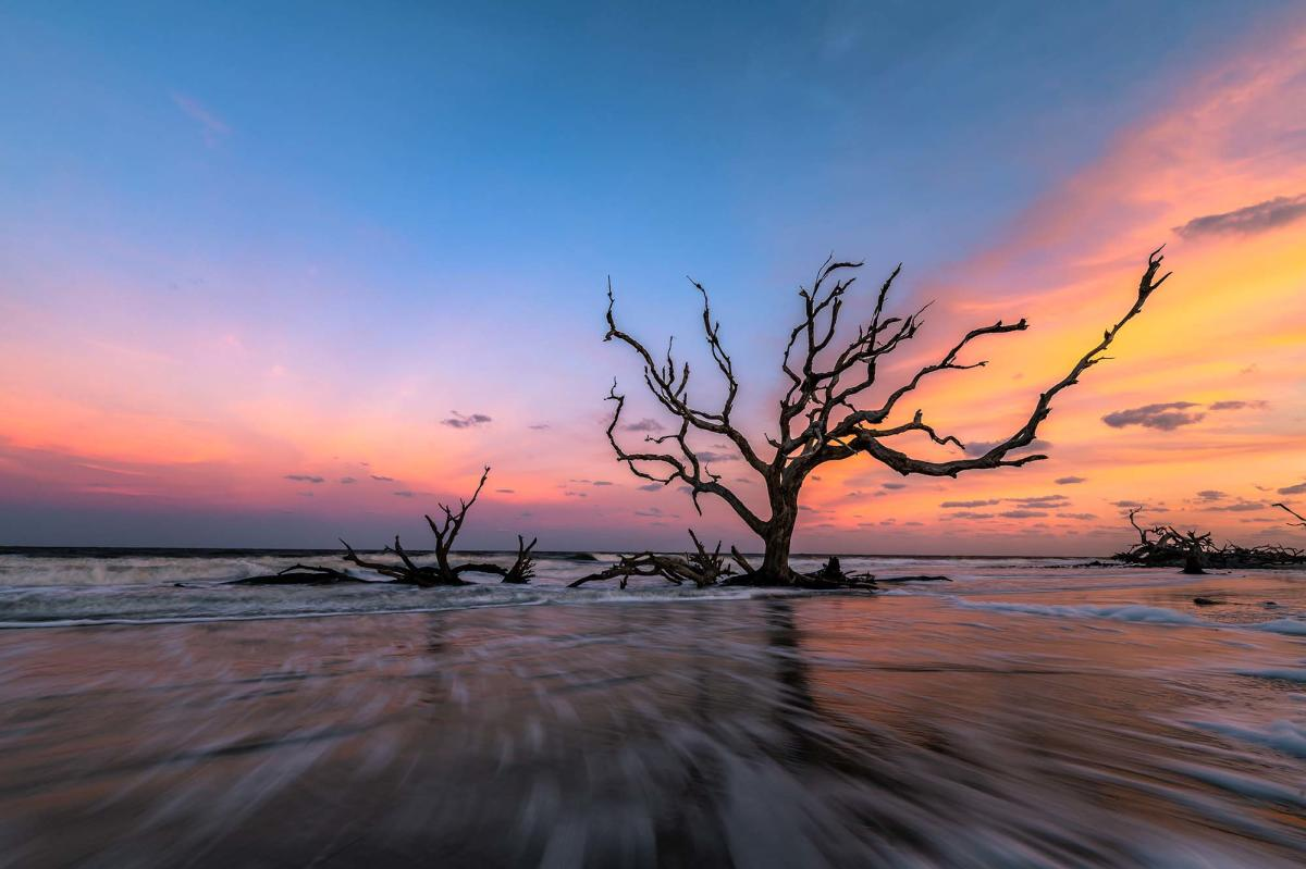 Driftwood Beach is one of the most popular beaches on Jekyll Island, GA