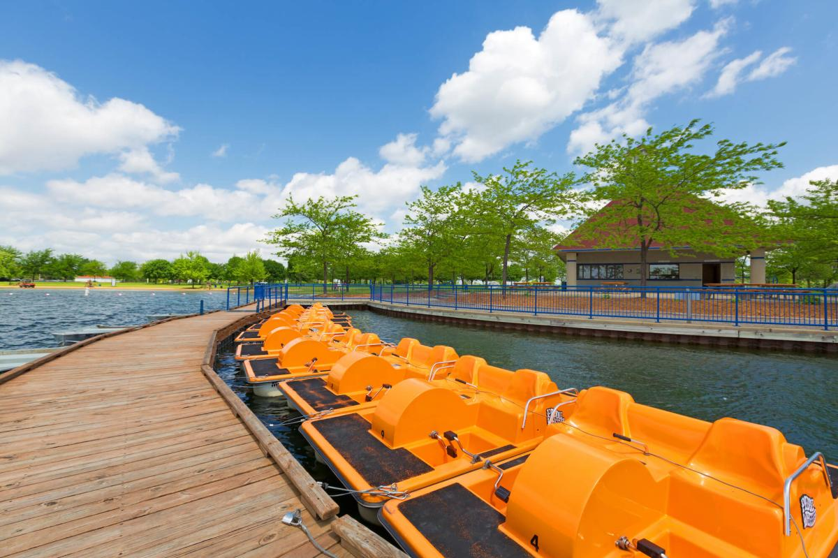Paddleboat Rentals lined up in the water at the William H. Haithco Recreation Area in Saginaw, MI