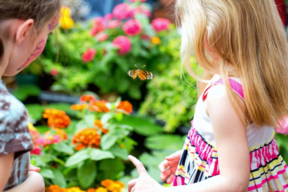 Girls enjoying the Butterflies in Bloom at Dow Gardens