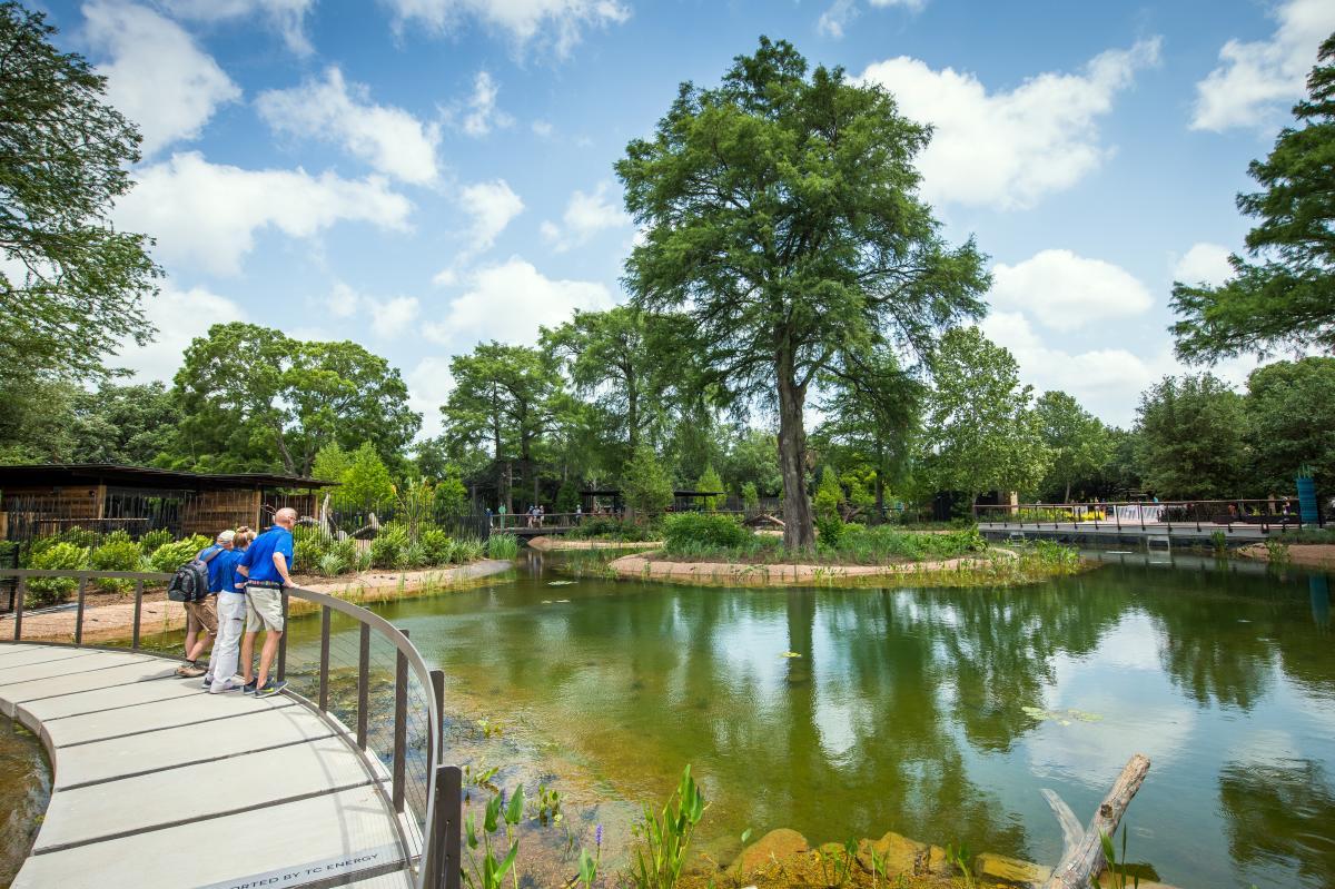 Texas Wetlands - Houston Zoo