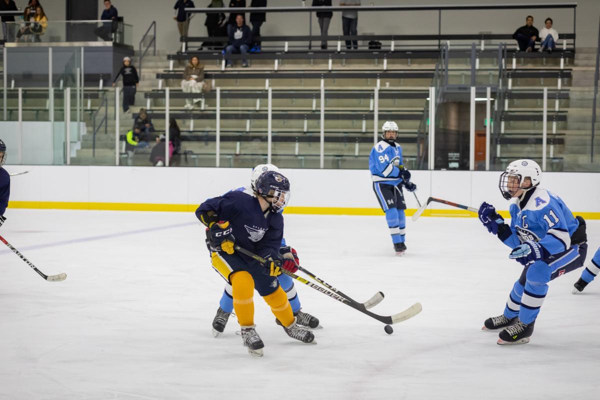 Great-Park-Ice-Hockey