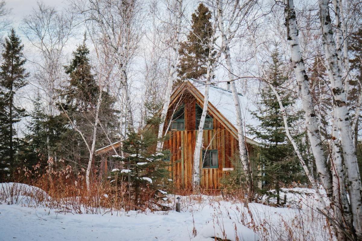 wooden cabin surrounded by trees in the snow