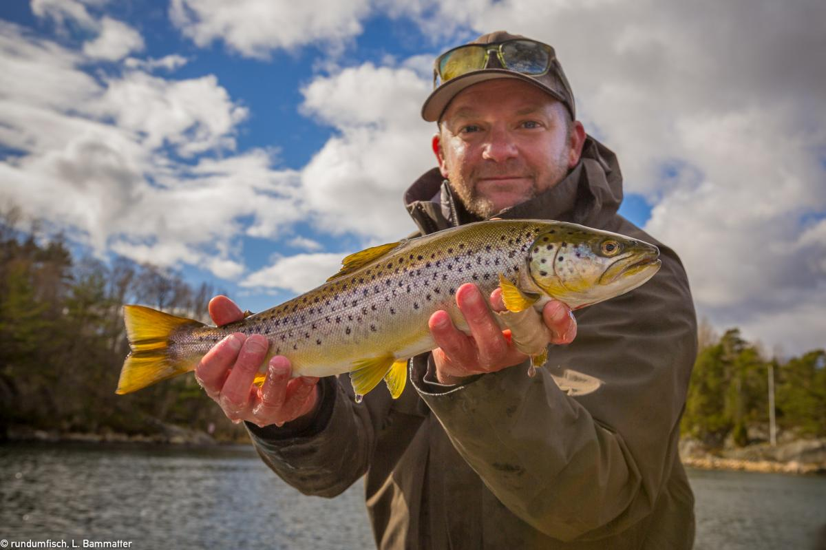 A guy holding a sea trout.