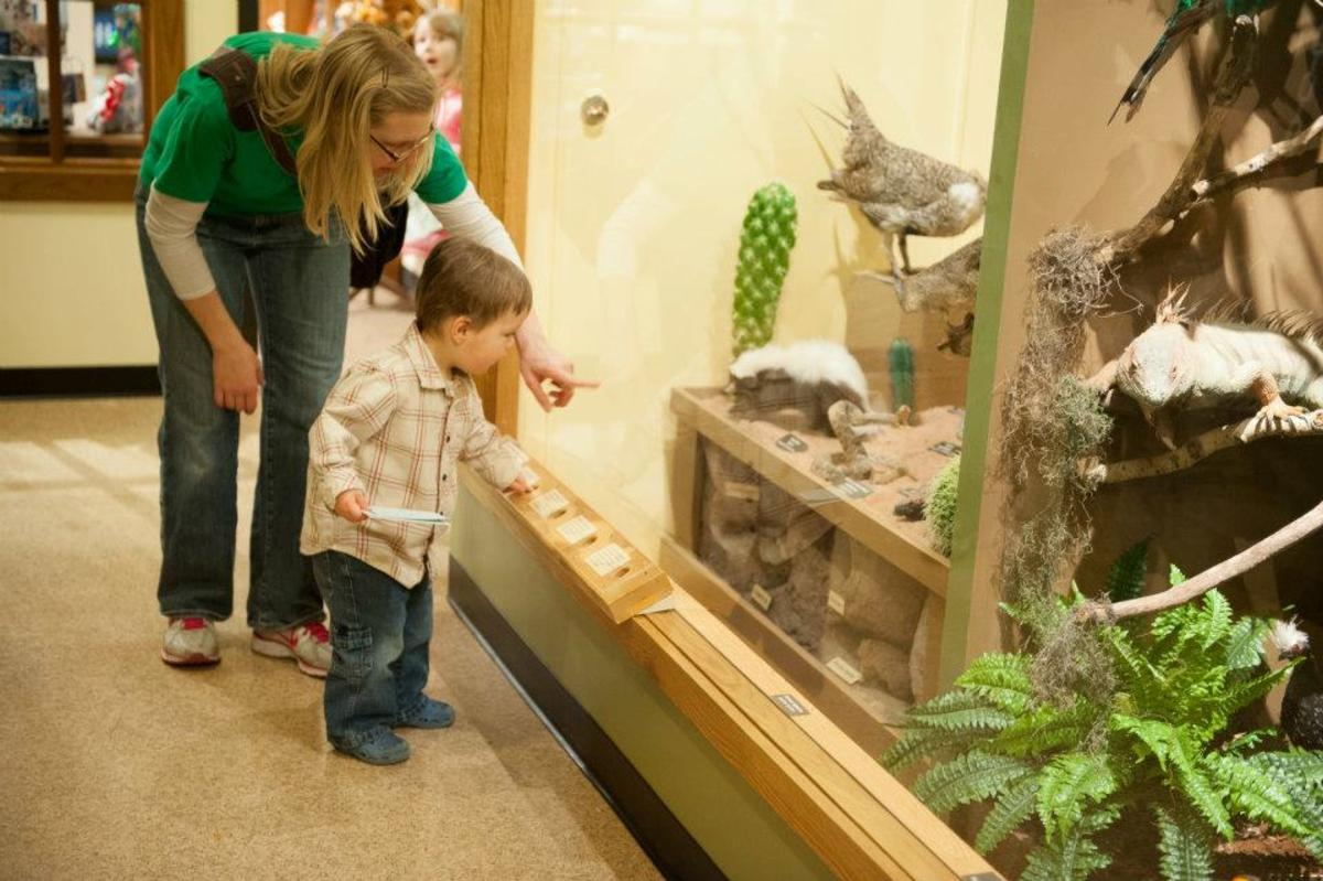 UWSP Museum of Natural History