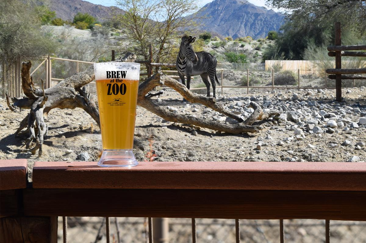 Living Desert Brew at the Zoo