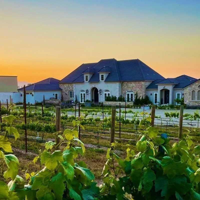 Domaine Chardonnay
