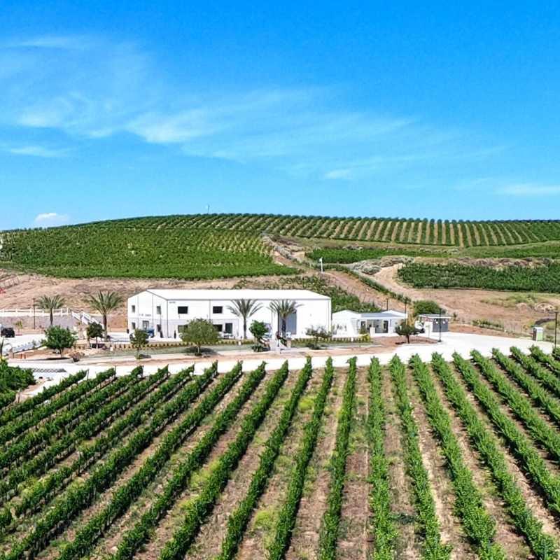Akash Winery & Vineyards