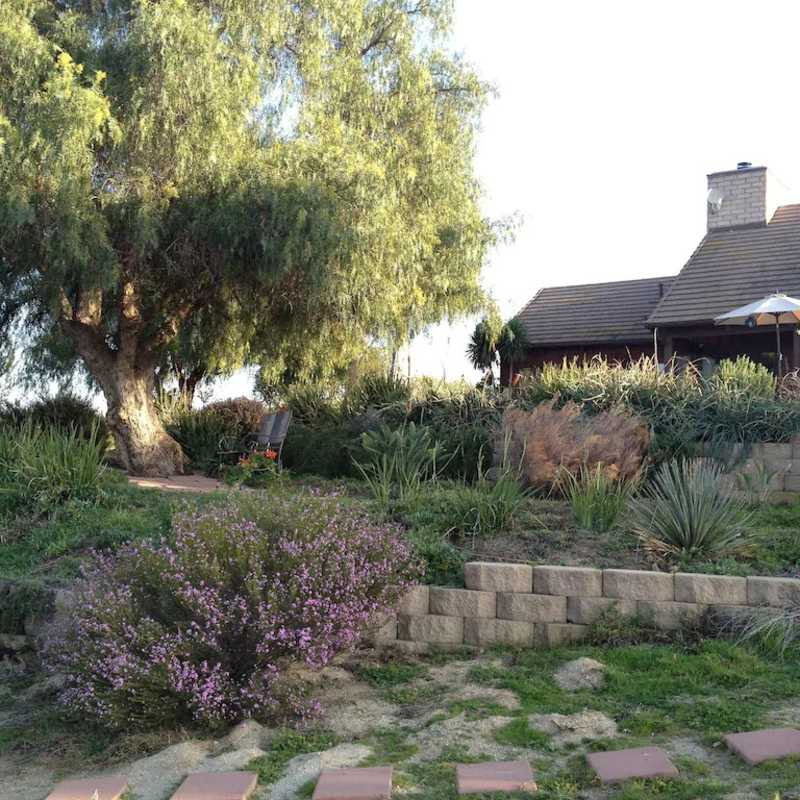 Wine Country Home 1