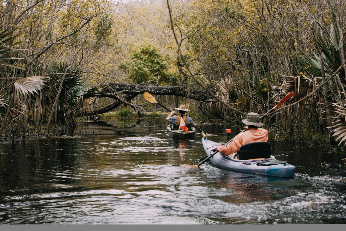 Bayou Vermilion Excursion kayakers paddling