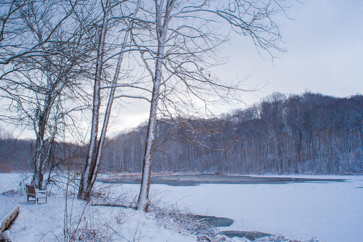 Winter Snow On Griffy Lake In Bloomington, IN